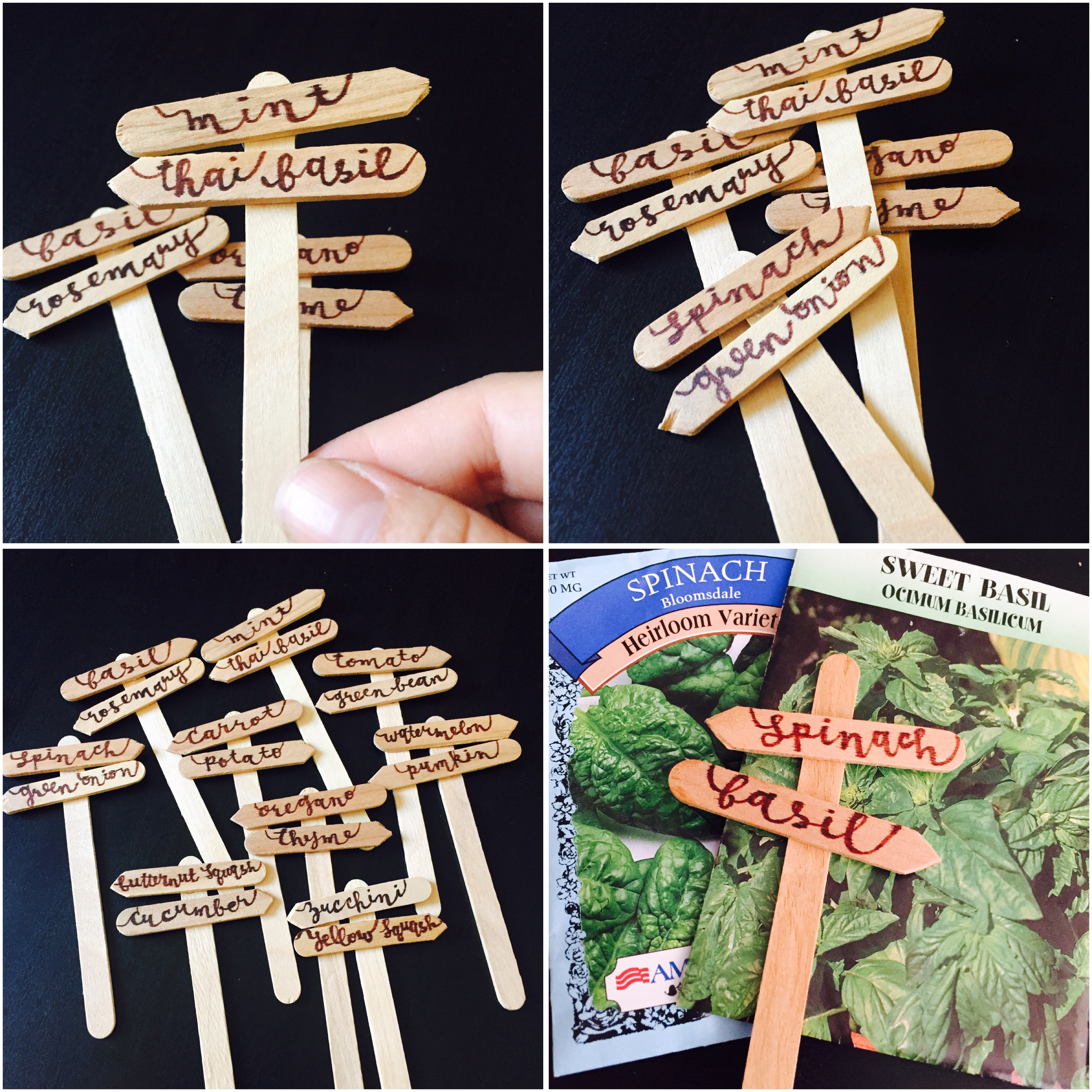 Popsicle Stick Garden Markers